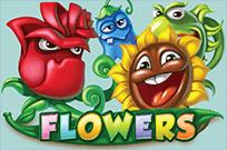 Flowers в Вулкане Удачи