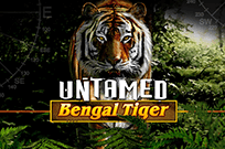 Untamed Bengal Tiger в Вулкане Удачи